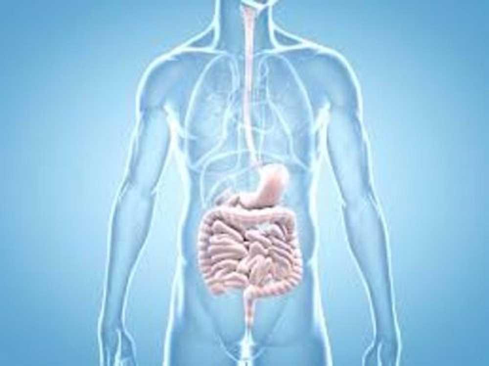 Ysn-Jp | Frühe Krebssymptome, die 90% der Menschen ignorieren